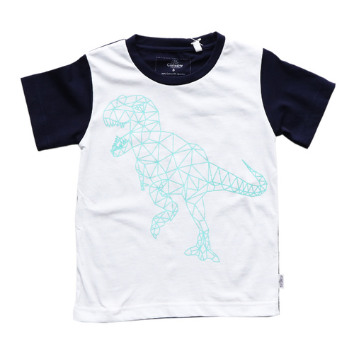 Curiosity Geo T-Rex T-shirt UV Colour